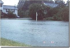 Qual Run Flooding III